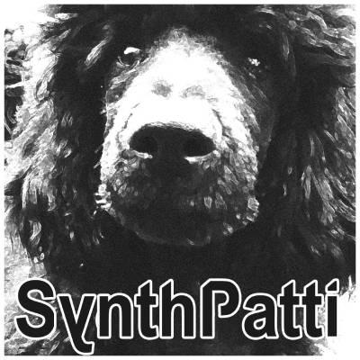 Synthpatti.com
